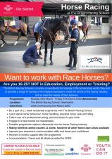 Want to Work with Race Horses?