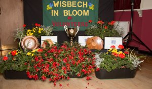PRESS RELEASE - Wisbech in Bloom