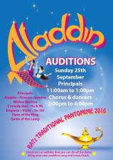 Pantomime auditions - Aladdin